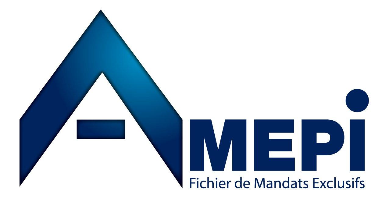 logo-AMEPI